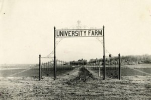 University of Minnesota Farm