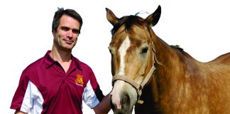 Andre Nault with horse