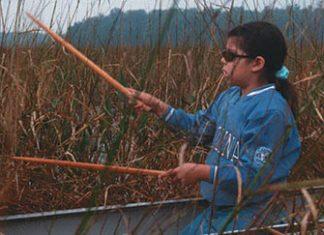 Girl in canoe harvesting wild rice