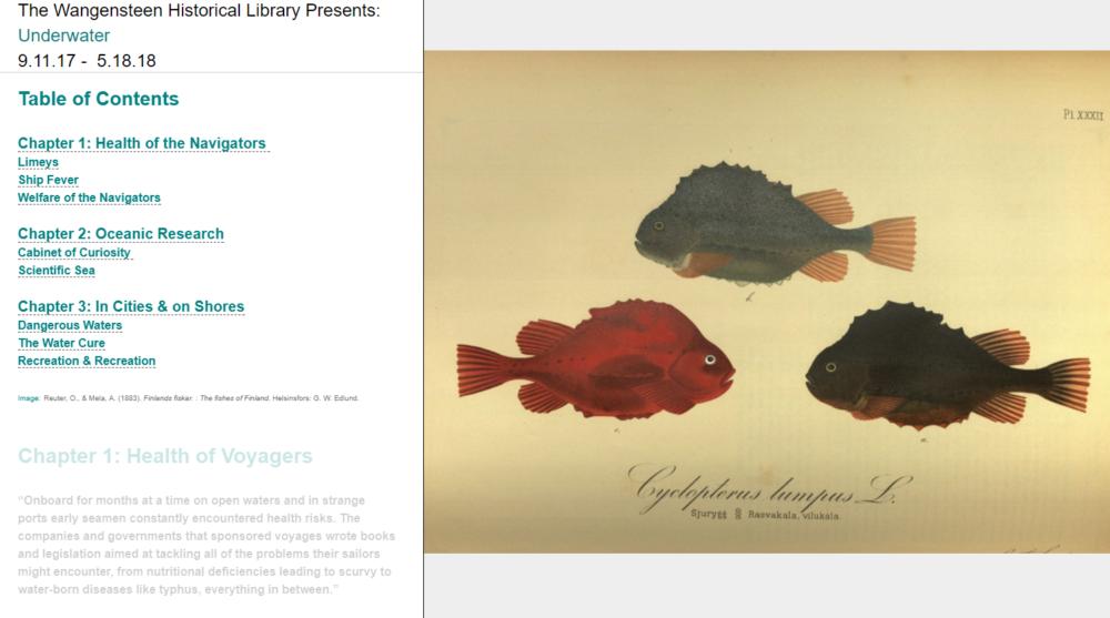 Underwater Online Exhibit