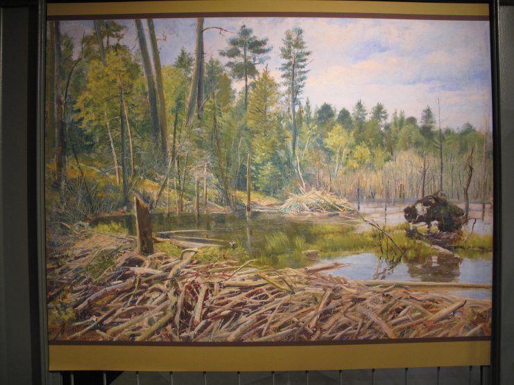 Reproduction of the landscape study painting background artist Charles Abel Corwin. Image from the Exploring Minnesota's Natural History exhibit at Elmer L. Andersen Library, 2015.