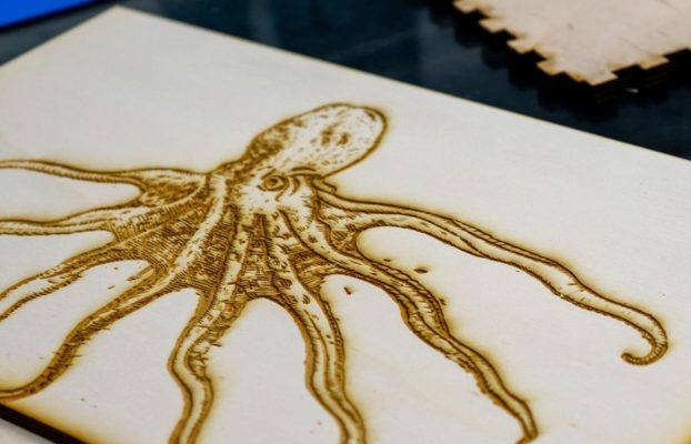 Laser cut of octopus image from the Wangensteen Historical Library.