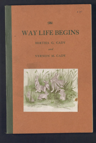 Photo of a book cover called, The Way Life Begins, featuring an illustration of seven rabbits.