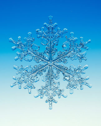Snowflake photo by Walter Wick