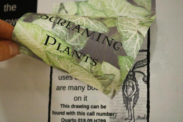 Quiz on screaming plants.