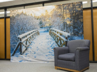 Nature Heals display in Wilson Library