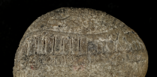 High resolution composite macro image of the stone created in 2020. Photographer: Samantha Porter.