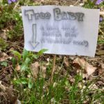 A note with an arrow pointing to a baby tree with info about the tree