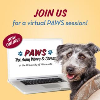 Virtual PAWS poster