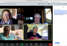 Screen shot of Zoom meeting with MCAD interns