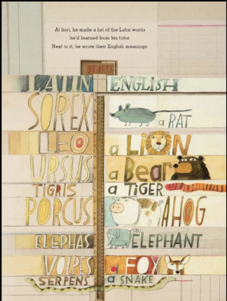 Latin and the English translations in pencil, watercolor, and collage