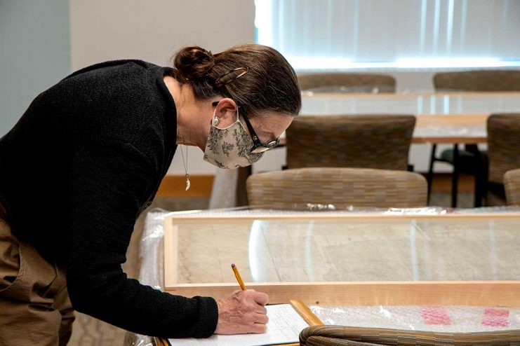 Sherelyn Ogden examines the Ricci Map