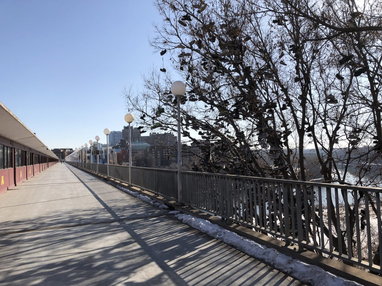 The Washington Avenue bridge walkway facing the East Bank. The Shoe Tree is to the right with some branches hanging over the walkway.